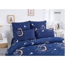 """Комплект постельного белья Selena """"Рождественская Ночь"""" евро 100350-030"""